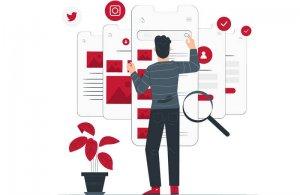 gestion de redes o una web bonita